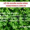 so tai khoan ngan hang hangtienich.com.vn