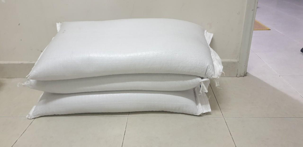 Bán buôn bán sỉ hạt giống lúa mì, lúa mạch nguyên bao 25kg